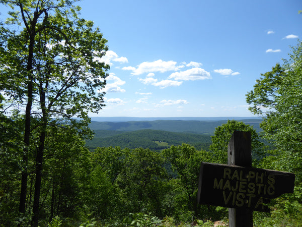 Ralph's Majestic Vista Allegheny Front Trail Black Moshannon State Park Moshannon State Forest