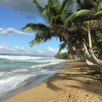 Sandy Beach, Puntas, Rincon Puerto Rico: Photo Purple Lizard Maps