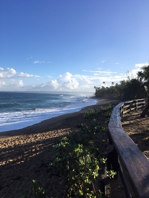 Rincon Puerto Rico: Almond Beach: Photo Purple Lizard Maps