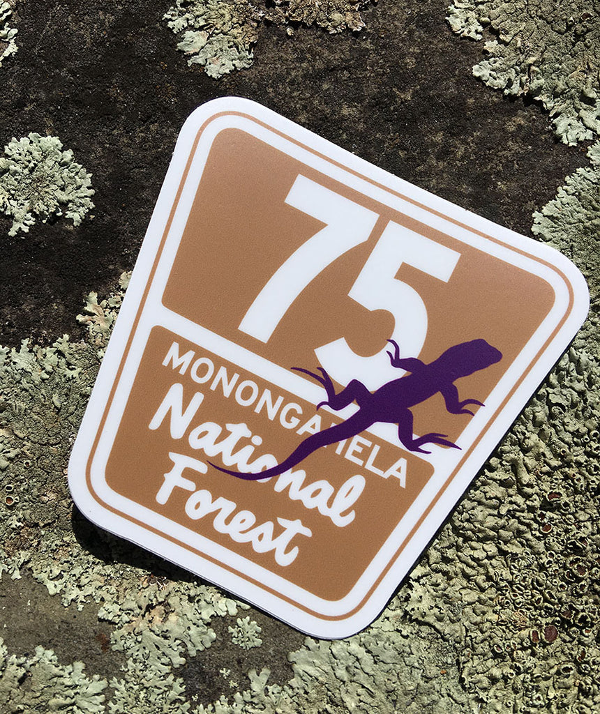 The 75 Lizard Sticker