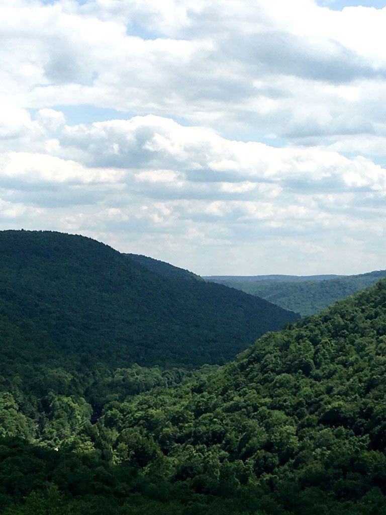 Pine Creek: Grand Canyon of Pennsylvania