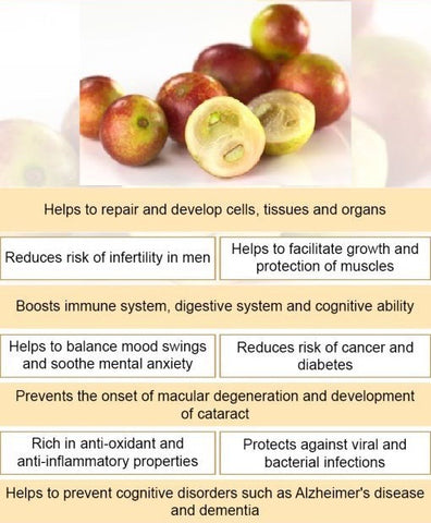 CAMU CAMU 30 Capsules (Hepatitis, Parkinson's, Atherosclerosis, Infertility, Glaucoma, Cataracts)