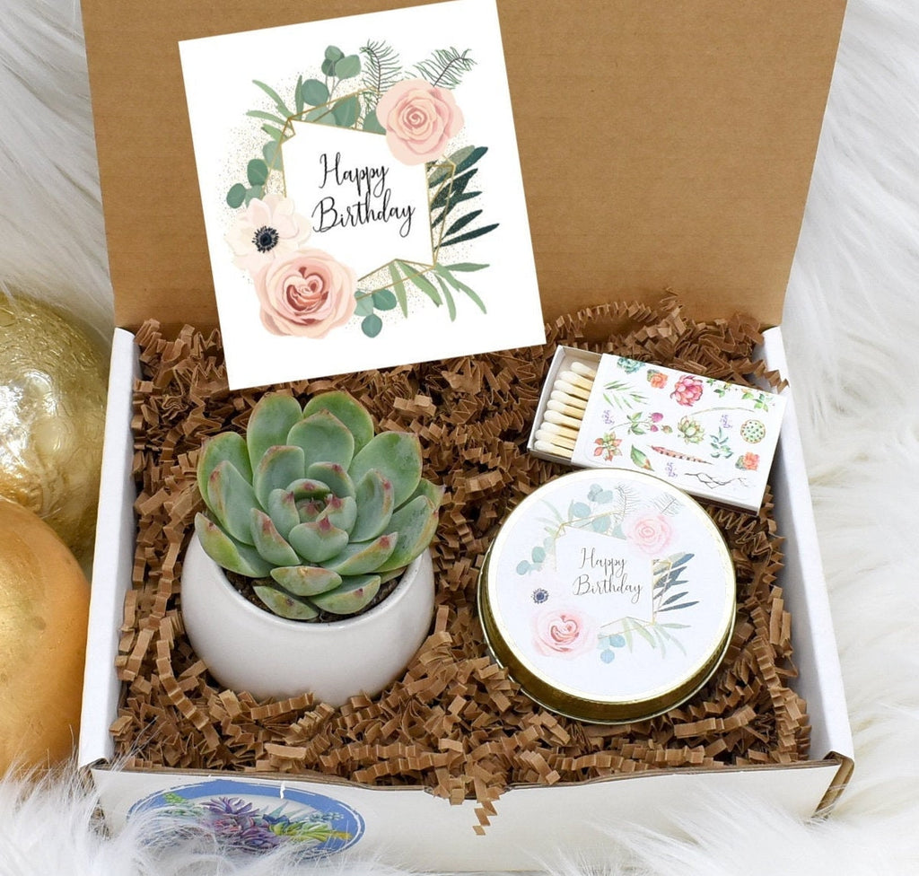 Gift Boxes Natural Succulents