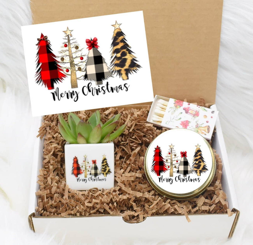 Merry Christmas Succulent Gift Box (XBX1)