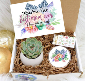 Best Mom Ever Gift Box with Live Succulent (XBH4)