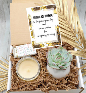 Sending You Sunshine Succulent Gift Box (XBI7)