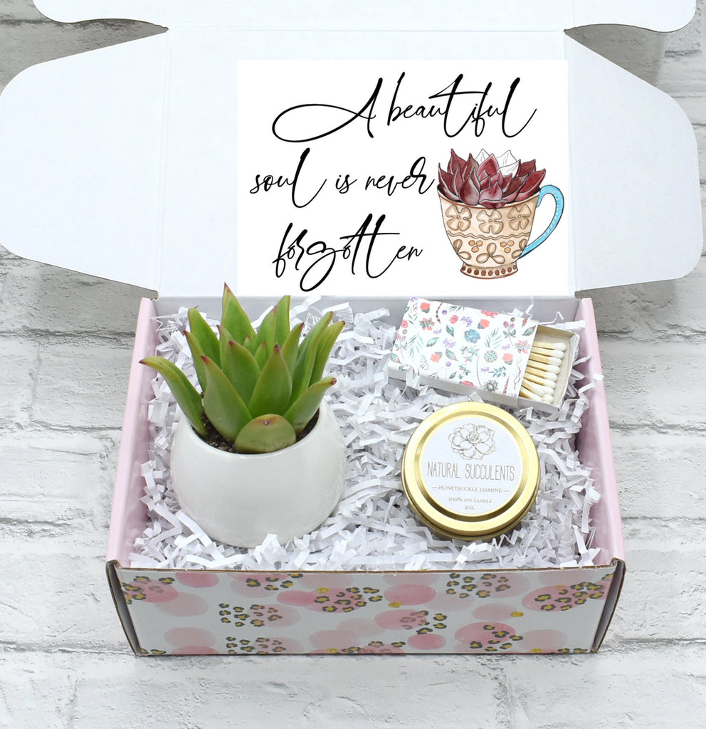 A beautiful soul is never forgotten - Succulent Gift Box - Sympathy gift box - Memorial Gift  - Encouragement Care Package - gift (XFD5)