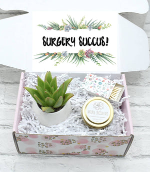 Surgery Succs Gift Box with Live Succulent (XFA6)