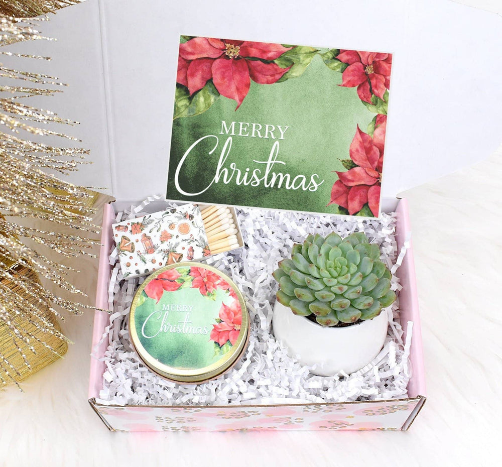 Merry Christmas Gift Box with Live Succulent (XBT1)