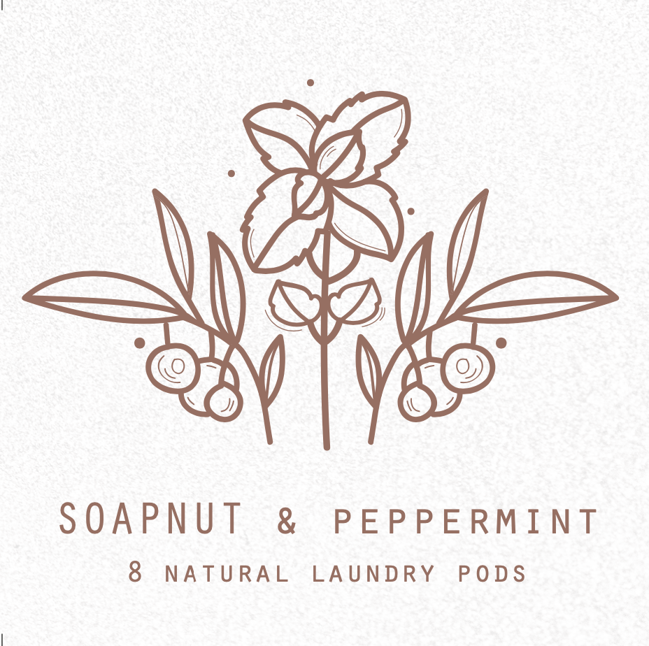 Soapnut Natural Laundry Pods
