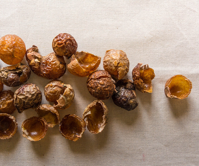 Eco Laundry- Loose Soapnuts 500g