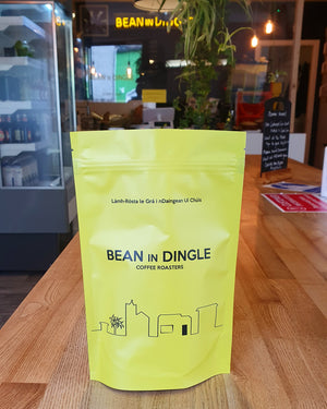 Work From Home Supply - BEAN IN DINGLE