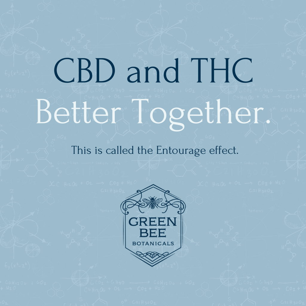 What is CBD – and how is hemp different from cannabis?