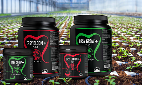 Future Harvest Easy Grow+ and Easy Bloom+