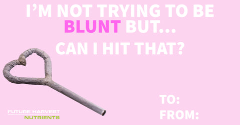 I'm not trying to be blunt but, can I hit that? Cannabis marijuana valentine