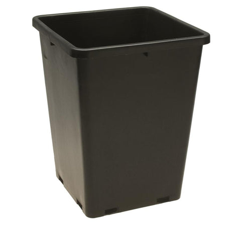 Square Pot - Two Gallon (Case Qty: 50 pcs)