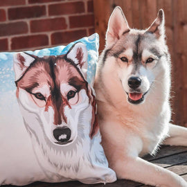 Your Pet on a Pillow Pillows Multi Bailey's Blanket