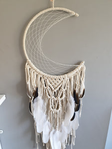 Natural feathered mooncatcher