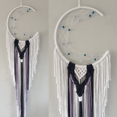 Pretty mooncatcher with unique blue and purple detailing