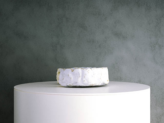 Camembert Cheese 02