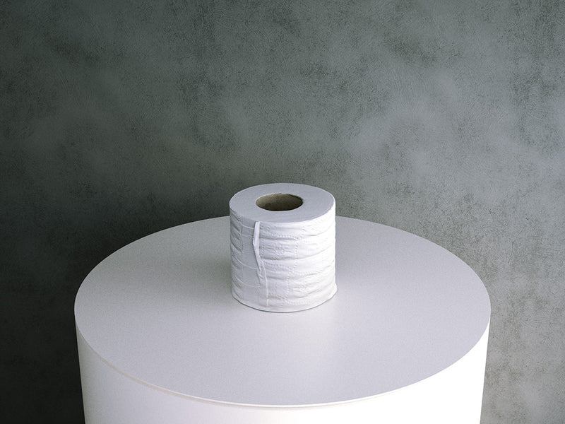 Toilet Paper Roll (bathroom)