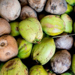 biodegradable green and brown organic coconuts