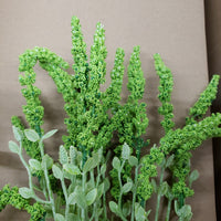 Plastic fern with veronica