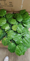Large pothos greenery leaves x 15