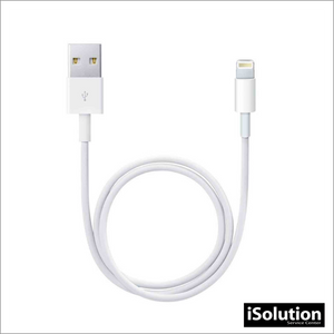 Copia de APPLE LIGHTNING A USB CABLE (1m)