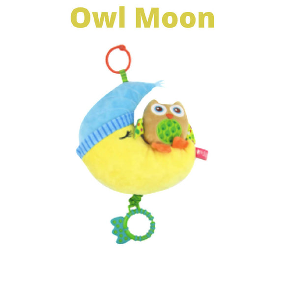Shears PullString Owl Moon Musical Toy SHMPTOM - WERONE