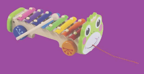 Rainbow Xylophone on pull along frog