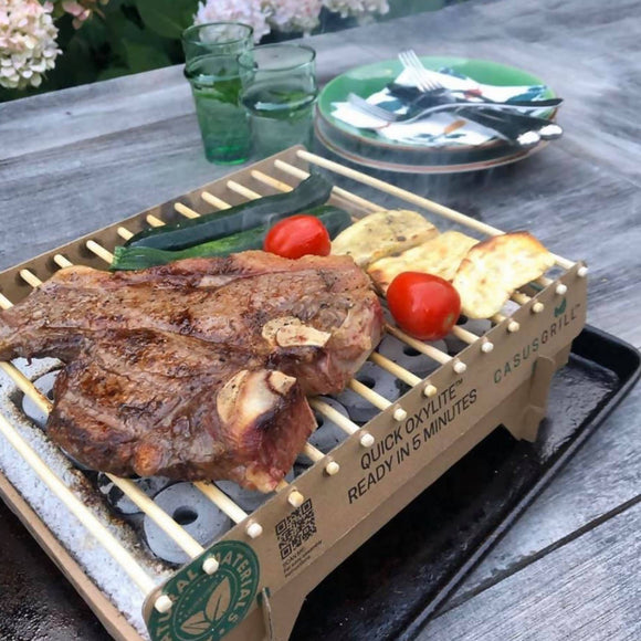 Casusgrill BBQ Instant Grill - WERONE