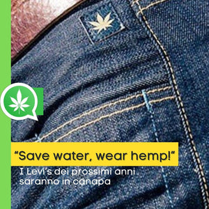 """Save water, wear hemp!"": anche i jeans Levi's sono di canapa"
