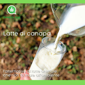 Latte di canapa: l'alternativa al latte animale che non fa male all'ambiente