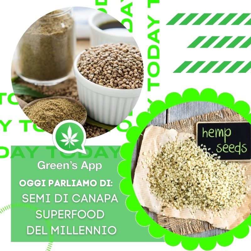 Semi di canapa, superfood del millennio