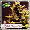 Indica Femm CBD - PINK DOCTOR+ CBD - Biological Seeds