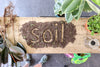 Potting Soil: Why It's Important for Your Houseplants