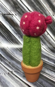Needle Felted Cactus Kit - Includes instructions ONLY - Makes two cacti - birthday present, craft kit, and great for kids