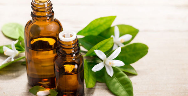 Neroli essential oil gives rejuvenating benefits to eczema, oily skin and itchy skin