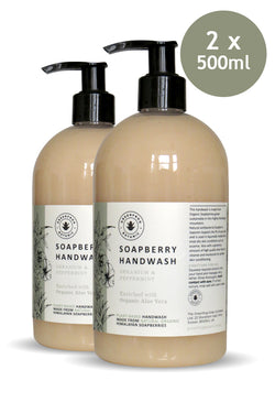 500ml Handwash Twin Sets