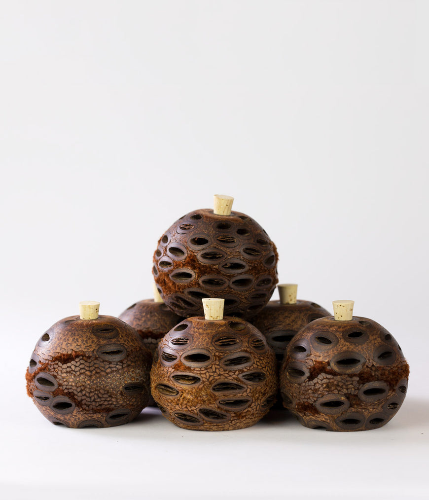 Banksia Aroma diffuser mini 6 packs. Our natural aroma diffusers can be used with any brand of essential oil. The Banksia Grandis seed is naturally porous making the pods perfect for diffusing oils with no flames or electricity needed.