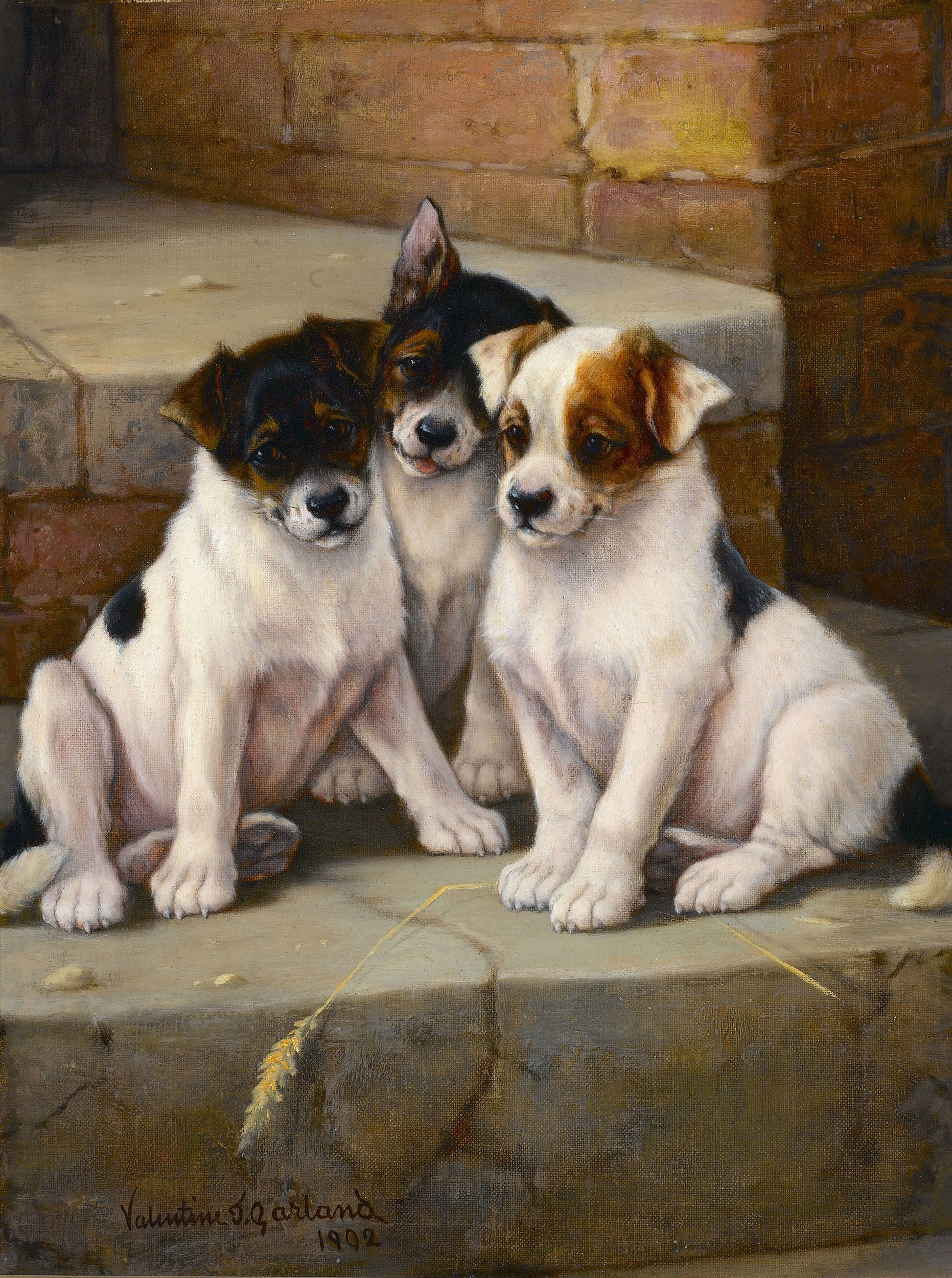 The New Litter by Valentine Thomas Garland