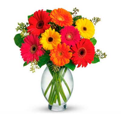 Buy brightly coloured mixed flower arrangements