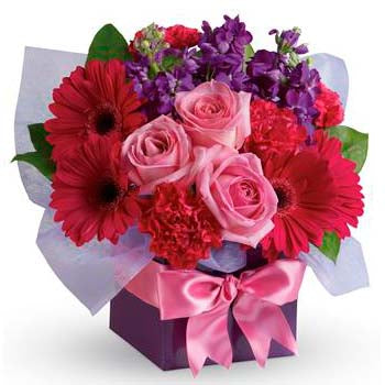 Send flowers to Darwin local florists Darwin flower delivery
