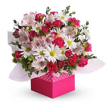 Send flowers to Hobart local florists Hobart flower delivery