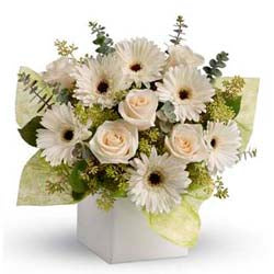 Send flowers to Brisbane local florists Brisbane flower delivery