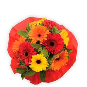 Gerbera & daisy flower arrangements