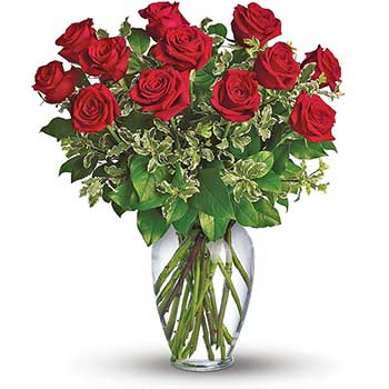 Buy Twelve Red Roses in a Vase