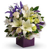 Striking Iris & Lily Flowers Gift Box