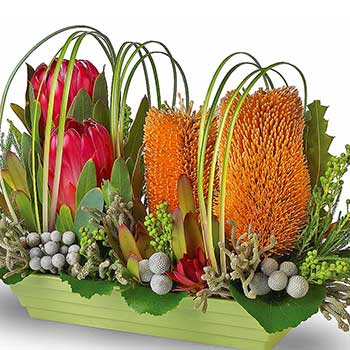 Buy Australian wildflower centrepiece